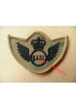 1249mtp QADI wings, velcro backed MTP patch.