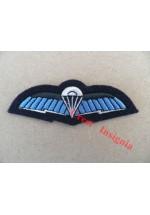 1250raf Royal Air Force, SF communicators wings.