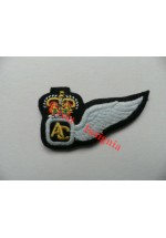 1255 Army Air Corps, Aircrew Brevet badge.