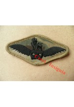 1256mtp. Army Air Corps, Pilots wings. MTP