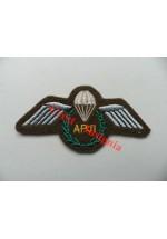 1295c, APJI qualification wings, Colour.