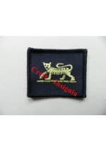 1404 PWRR 'Tiger' patch.