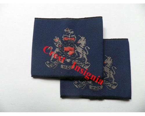 1169 RAF, Warrant Officer rank sliders, pair.