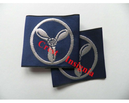 1171 RAF Senior Aircraftsman rank sliders, pair