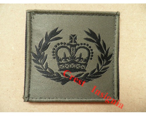 1076 Ubacs/MTP Velcro Rank Patch. CQMS / QMSI.