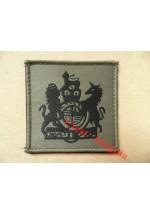 1077 Ubacs/MTP Velcro Rank Patch. RSM / WO1.