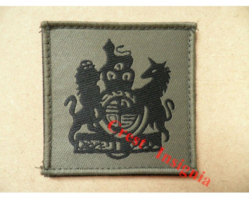 1077 Ubacs/MTP Velcro Rank Patch. RSM / WO1.