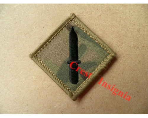 1201mtp Class 1 Soldier qualification badge. MTP.