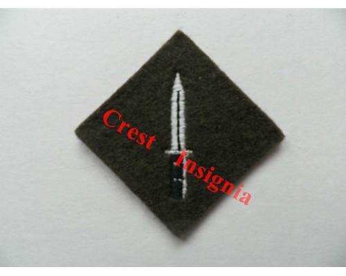 1201c Class 1 Soldier, qualification badge. Colour