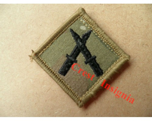 1202mtp PSBC [Senior Brecon] qualification badge. MTP