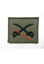 1211s PTI   [physical training instructor] trade badge. Subdued.