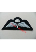 1240raf Royal Air Force parachute wings. Colour.