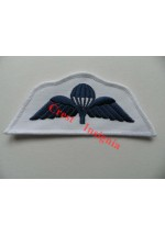 1240rn Royal Navy Parachute Wings.