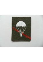 1241c Para Trained 'Lightbulb' badge. Colour.