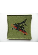 1242s 5th Airborne, Pegasus patch. Subdued.