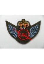 1249c QADI Wings. Colour.