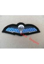 1250rn SF Communicators wings. Royal Navy version.