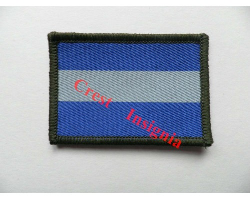 1258. Army Air Corps. TRF patch.