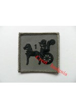1189 RAF Regiment, 1 Squadron TRF patch.
