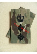 1013mtp UK Forces, Colonel MTP Rank Sliders