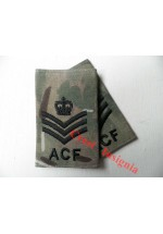 1034 ACF, MTP Rank Sliders. Staff/Sergeant.