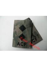 1037 ACF, MTP Rank Sliders. Lieutenant.