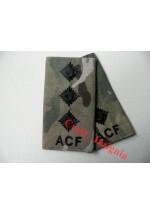 1038 ACF, MTP Rank Sliders.  Captain.