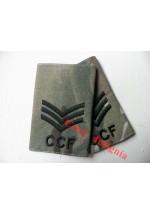 1043 CCF MTP Rank Sliders.  Sergeant.