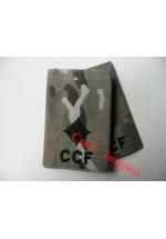 1046 CCF, MTP Rank Sliders.  2nd Lieutenant