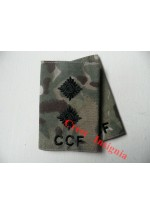 1047 CCF, MTP Rank Sliders.  Lieutenant.